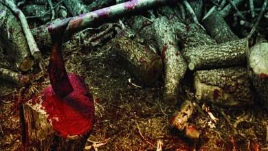 """Photo of [CRÍTICAS] SIROLL! (ESP) """"Més llenya!"""" CD 2015 (Blood fire death)"""