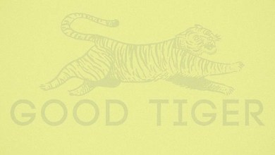 Photo of [CRÍTICAS] GOOD TIGER (USA) «A head full of moonlight» CD 2015 (Autoeditado)