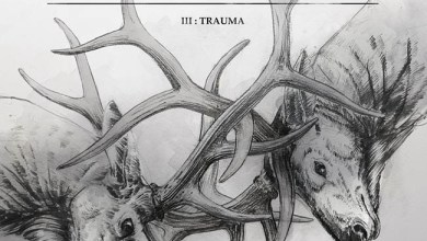 Photo of [CRÍTICAS] HARAKIRI FOR THE SKY (AUT) «III – Trauma» CD 2016 (Art of propaganda)