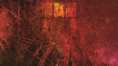 Photo of [CRÍTICAS] METTADONE (UKR) «Invisible disease» CD 2015 (Wolfshade records)