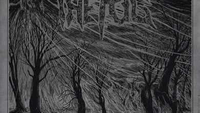 Photo of [CRÍTICAS] THE FOG (DEU) «Perpetual blackness» CD 2016 (Memento Mori)