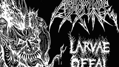 Photo of [CRÍTICAS] ABHOMINE (USA) «Larvae Offal Swine» CD 2016 (Hells Headbangers / Osmose Productions)