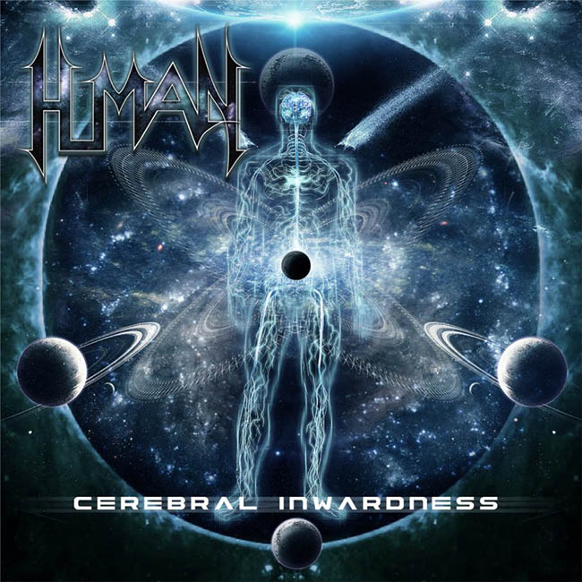 human - cerebral - web