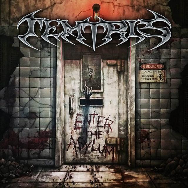 temtris-enter-the-asylum-web