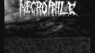 Photo of NECROPHILE (JPN) «Awakening those opressed» CD 2017 (Unholy Prophecies)