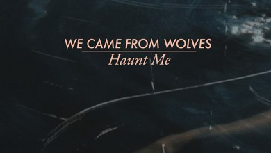 Photo of WE CAME FROM WOLVES (GBR) «Haunt me» CD EP 2017 (Heart Out Records) –