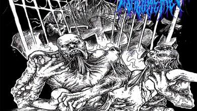 "Photo of DISPLEASED DISFIGUREMENT (ZAF) ""Extermination process"" CD 2018 (CDN Records)"
