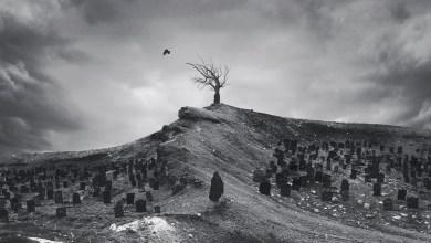Photo of DEATHWHITE estrenan nuevo album, 'For A Black Tomorrow'