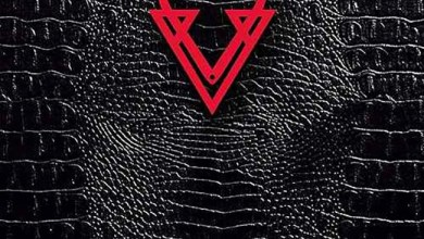 Photo of VEIN (COL) «Chapter I» CD 2017 (Heatworks)