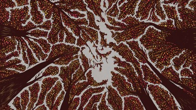 Photo of TRASH BOAT (GBR) «Crown Shyness» CD 2018 (Hopeless records)