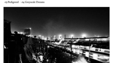 Photo of PACIFIST (IND) «Greyscale dreams» CD EP 2019 (Autoeditado)