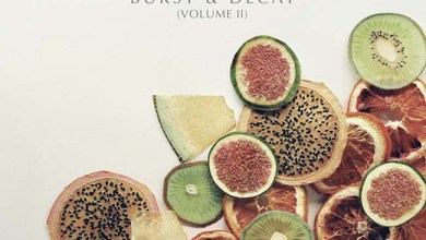 "Photo of THE WONDER YEARS (USA) ""Burst and decay (Volumen II)"""