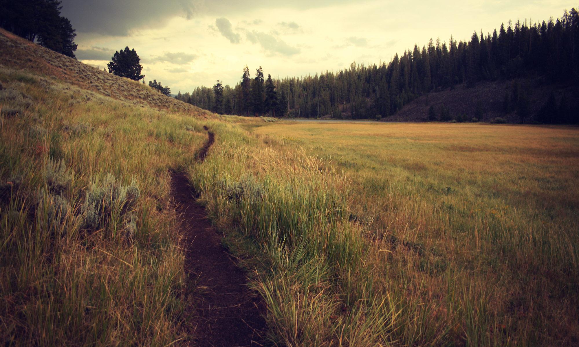Singlewide trails
