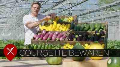 courgette bewaren winston