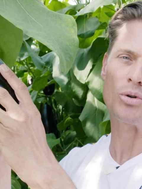 aankooptips aubergine