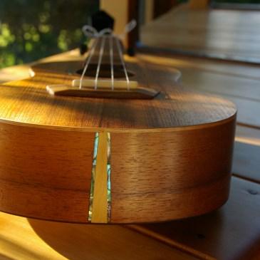 Ned Trewartha ukulele