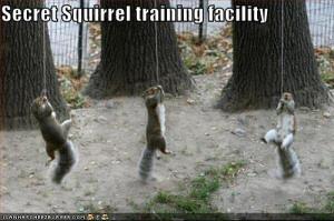 Secret Squirrel Training Facility!