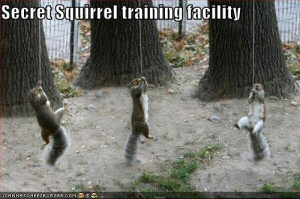 Secret Squirrel Training Facility!