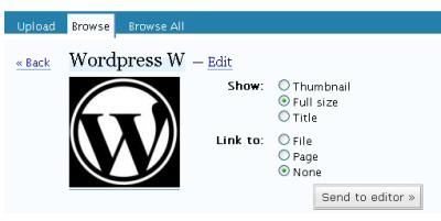 Uploading images in WordPress
