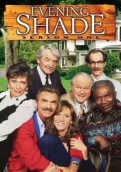 Evening Shade Season One DVD Cover Art