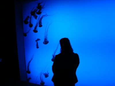 Cosette with jellyfish