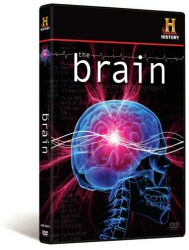 The Brain DVD cover art