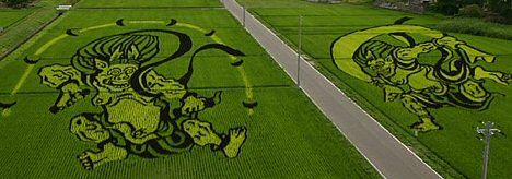 Rice field art from Inakadate