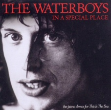 Waterboys: In a Special Place