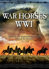 War Horses of WWI DVD