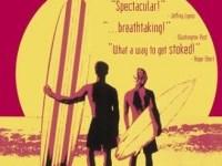 Endless Summer 2 DVD