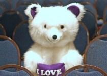 Bear Loves You