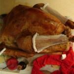 Vickie, the sexy turkey