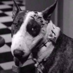 32 Days of Halloween III, Day 13: Frankenweenie