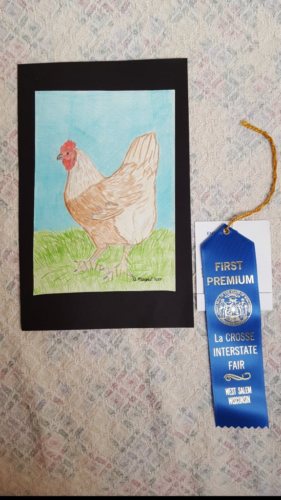 chicken colored pencil drawing with first place blue ribbon from fair for sale on etsy