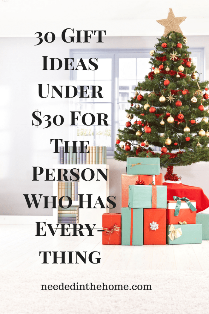 Christmas tree gifts bookcase books carpet window 30 Gift Ideas Under $30 For The Person Who Has Everything