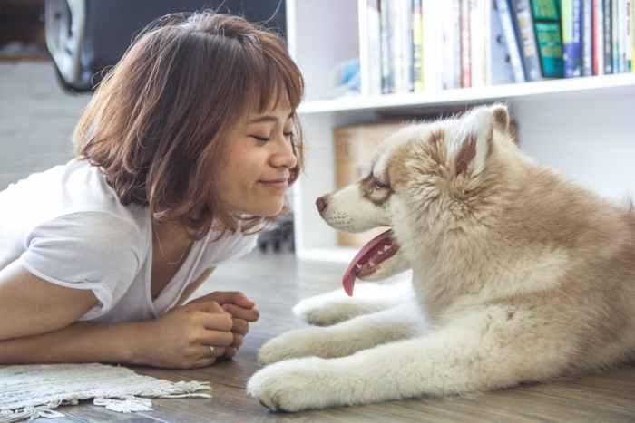 woman and dog on floor with underfloor heating home luxury books rug wood floor