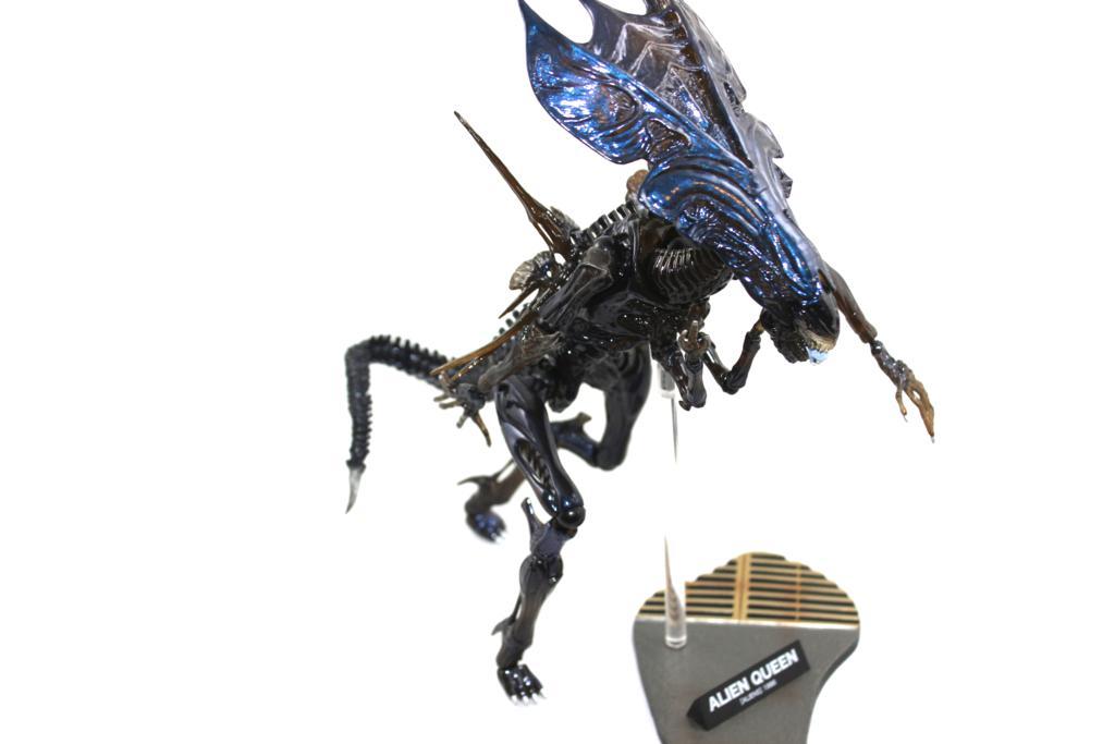 Sci-Fi Revoltech  Alien Queen Review!