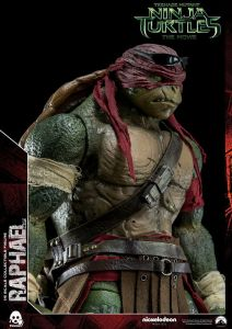 Donatello and Raphael (10)