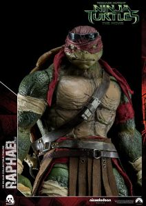 Donatello and Raphael (11)