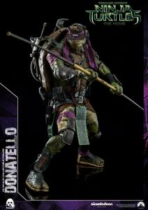 Donatello and Raphael (24)