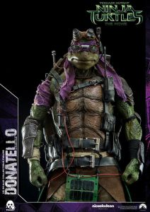 Donatello and Raphael (29)
