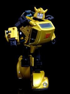 G2 Bumblebee (17)