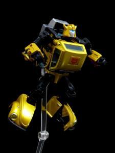 G2 Bumblebee (19)