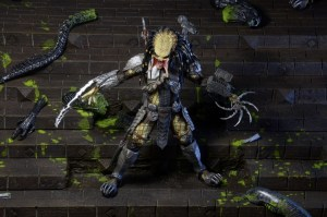Predator series 14 (10)