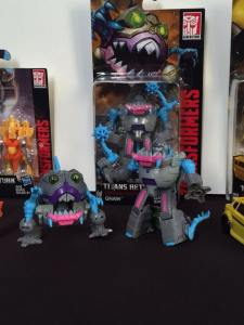 Hasbro Transformers SDCC 2016 (18)
