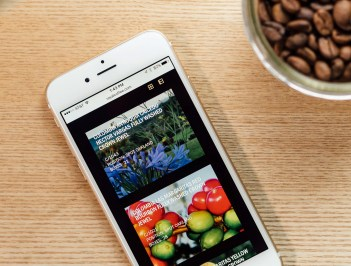 Royal Coffee Importers website on iPhone