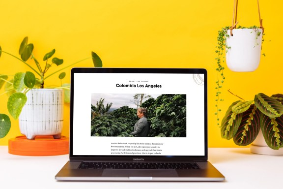 Parlor Colombia los angeles on MacBook
