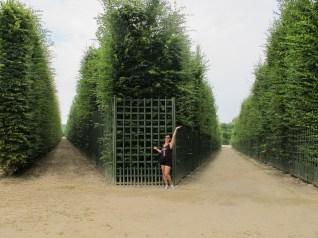 modeling King Henry XIV's garden ;)