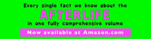 Afterlife banner 1