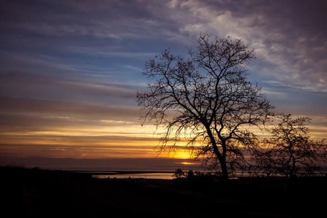 Marin County Sunrise